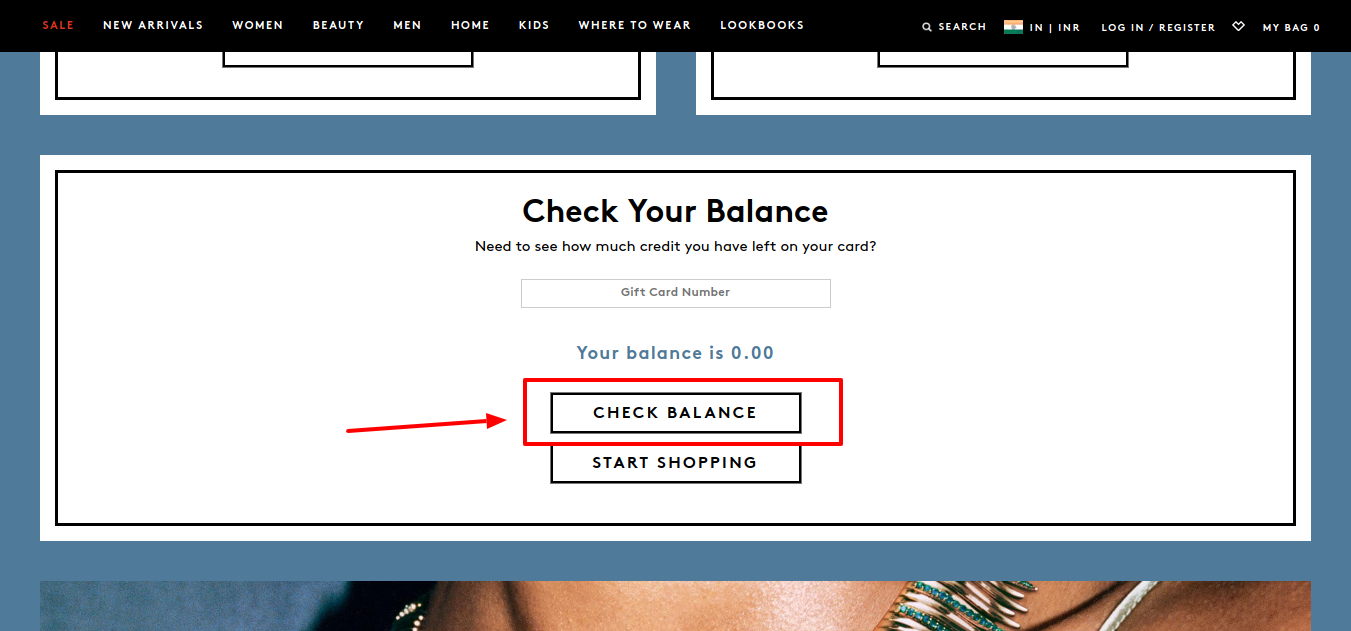 Barneys New York gift card check ba;ance
