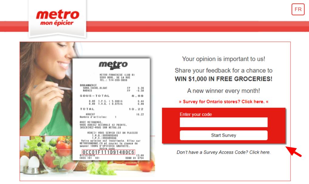 Metro Survey