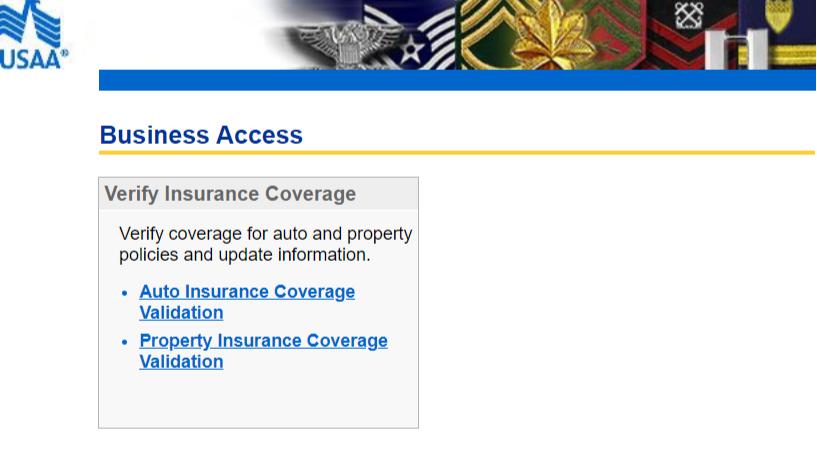 Partners USAA account access